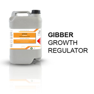 Gibber growth regulator