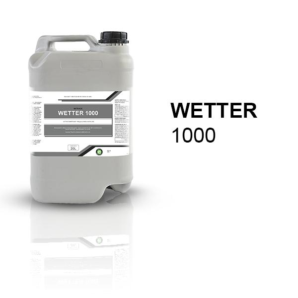 Wetter 1000