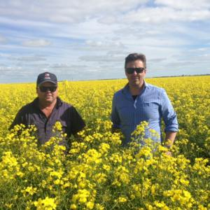 John barbetti in canola crop with farmer