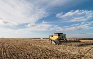 Tractor Harvesting wheat
