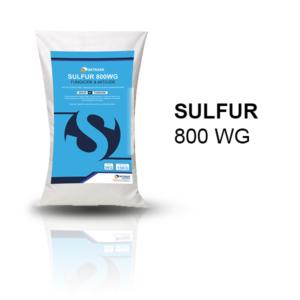 Sulfur 800 WG Fungicide & Miticide